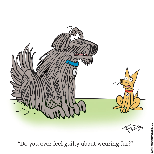 WR-103_Guilty-About-Fur_42_630x